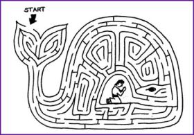 Jonah Maze