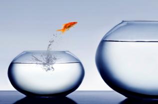 faith-fish-jump