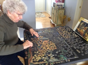 200 Pieces Down But Still Lots to Go for Elsie