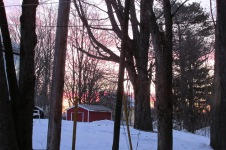 Glenda Sunrise