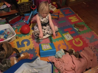 Nurse Megan Stuffed Animal Quarantine Clinic
